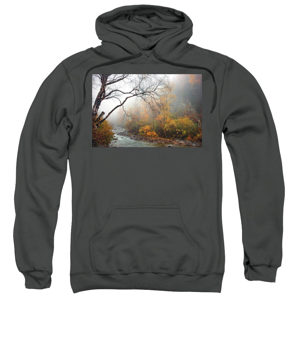 Nature Sweatshirt featuring the photograph Foggy Autumn by Ron Day