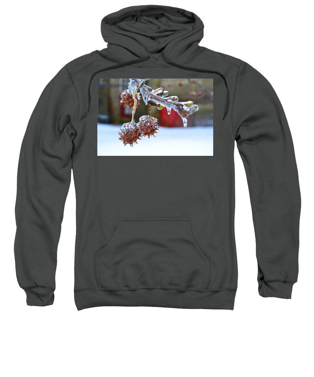Fonthill Sweatshirt featuring the photograph Fonthill by Michael Brooks