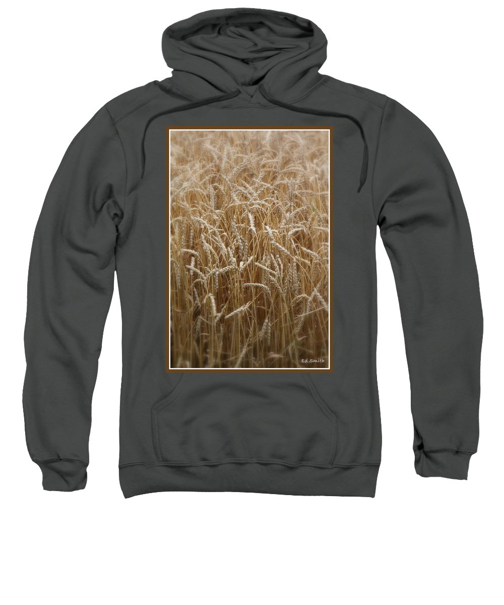 Food For Thought Sweatshirt featuring the photograph Food For Thought by Edward Smith