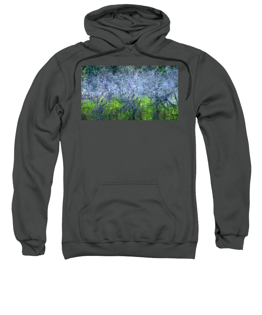 Bosques Sweatshirt featuring the photograph Forest City by Guido Montanes Castillo