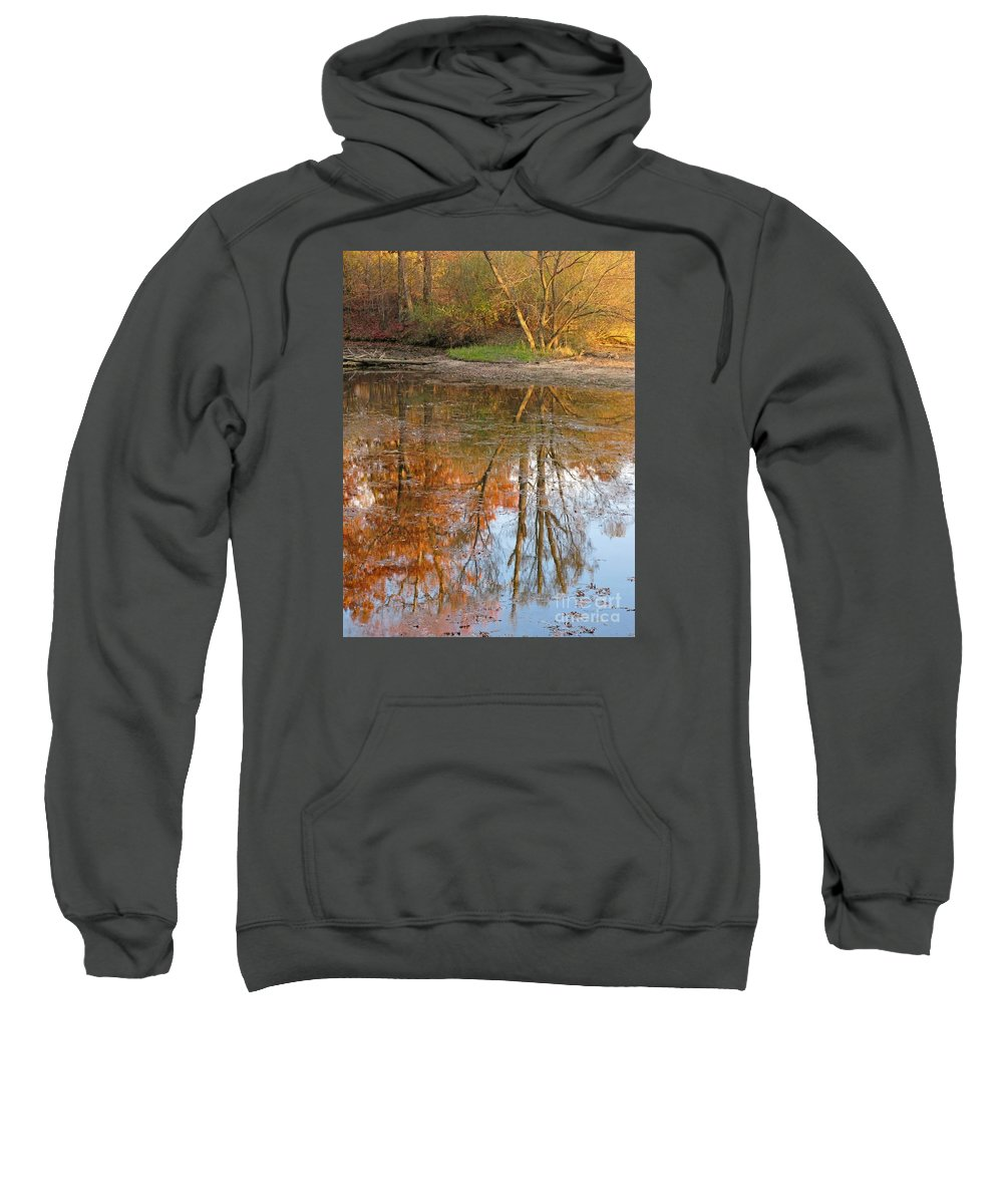 Autumn Sweatshirt featuring the photograph Forest Glow by Ann Horn