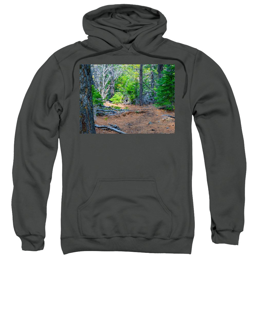Nevada Sweatshirt featuring the photograph Forest Path by Brent Dolliver