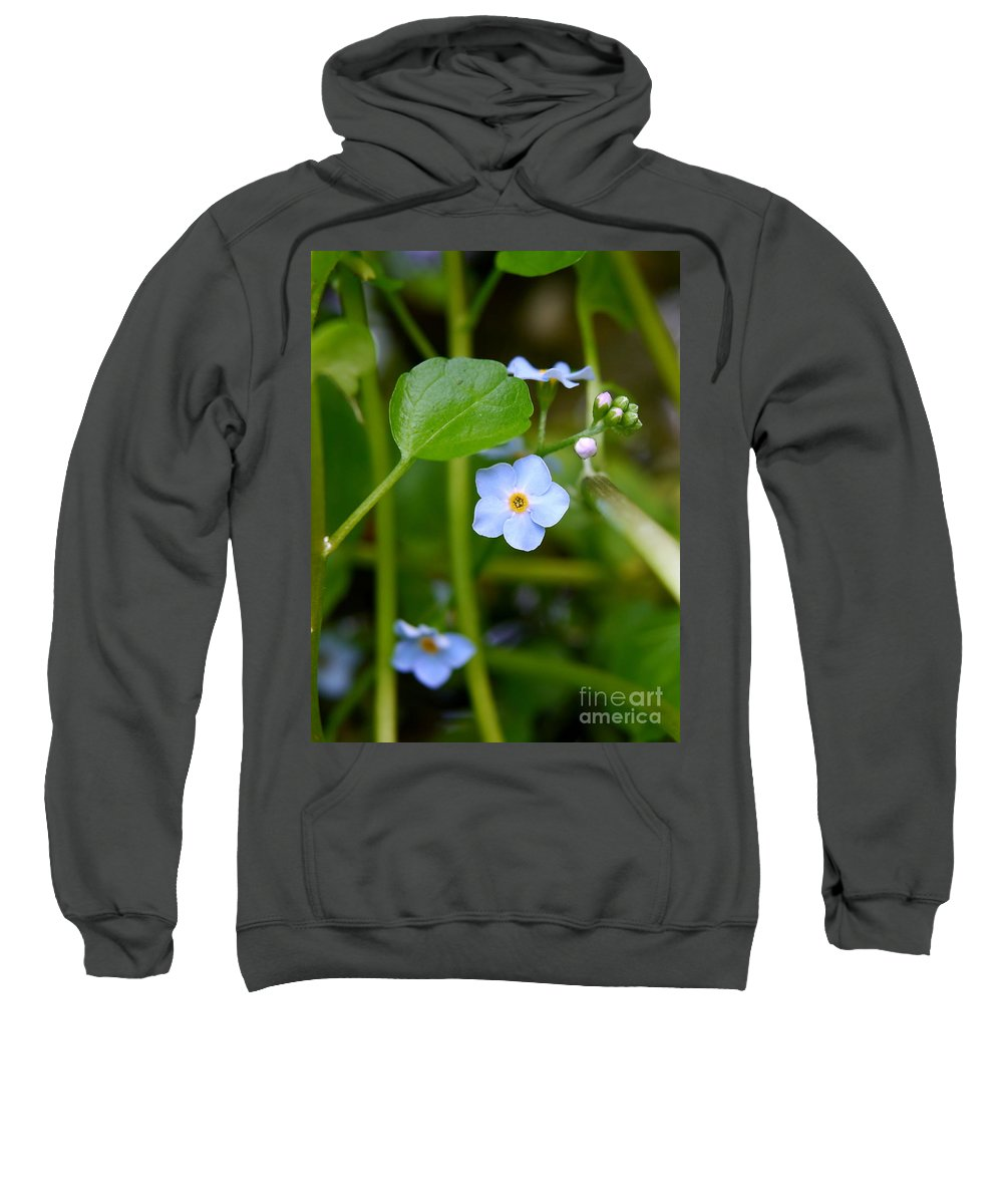 Forget Me Not Sweatshirt featuring the photograph Forget Me Not by John Chatterley