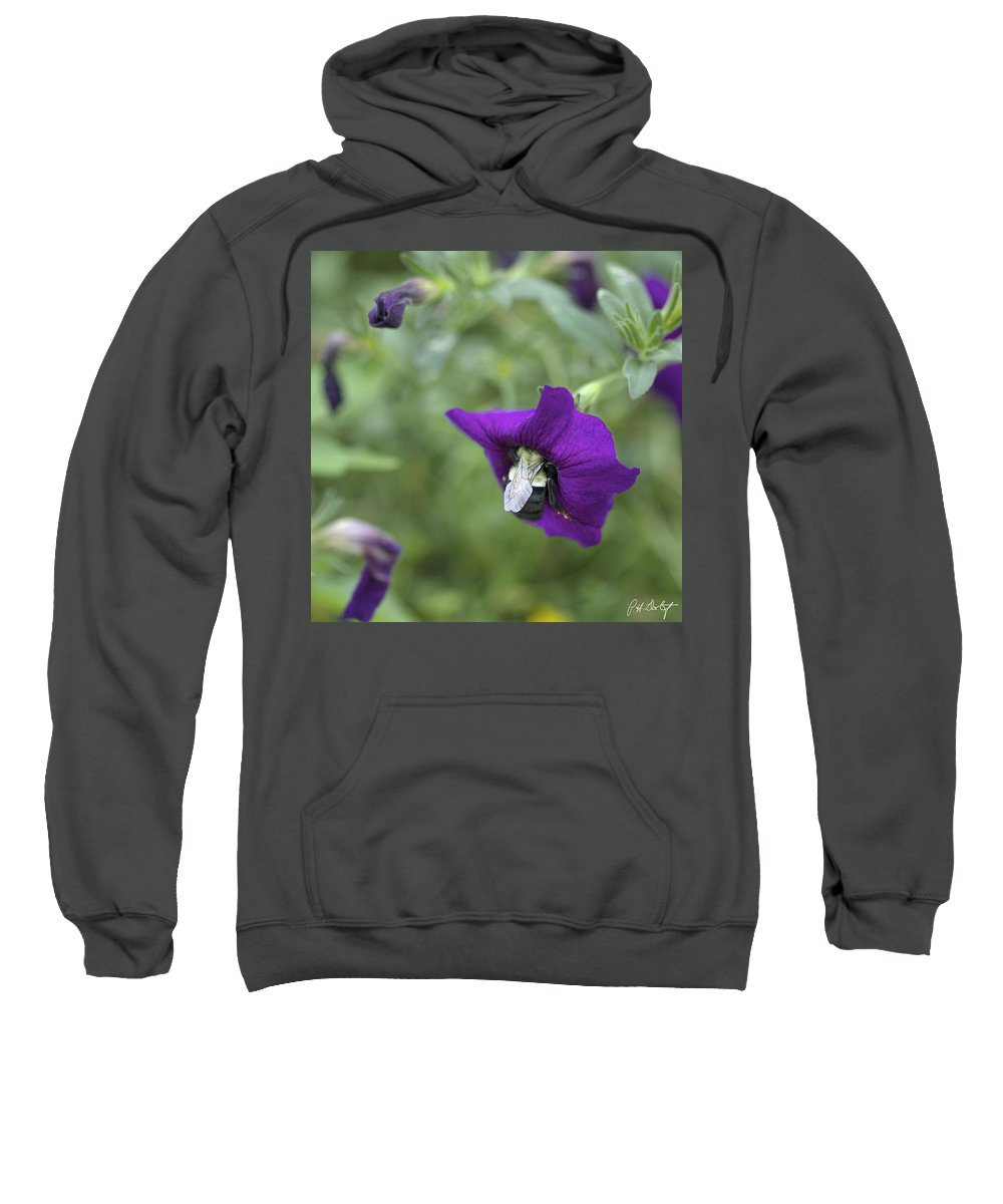 Blossoms Sweatshirt featuring the photograph Found Breakfast by Phill Doherty
