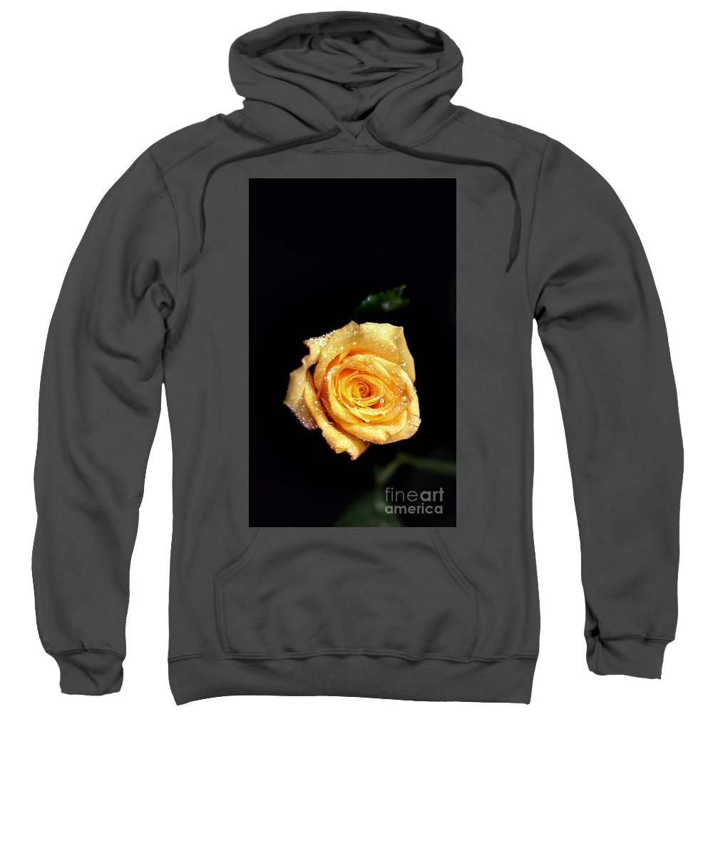 Pictures Of Flowers Sweatshirt featuring the photograph Friendship by Skip Willits