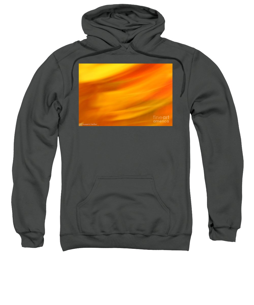 Abstract Sweatshirt featuring the photograph Fury In Color by Susan Herber