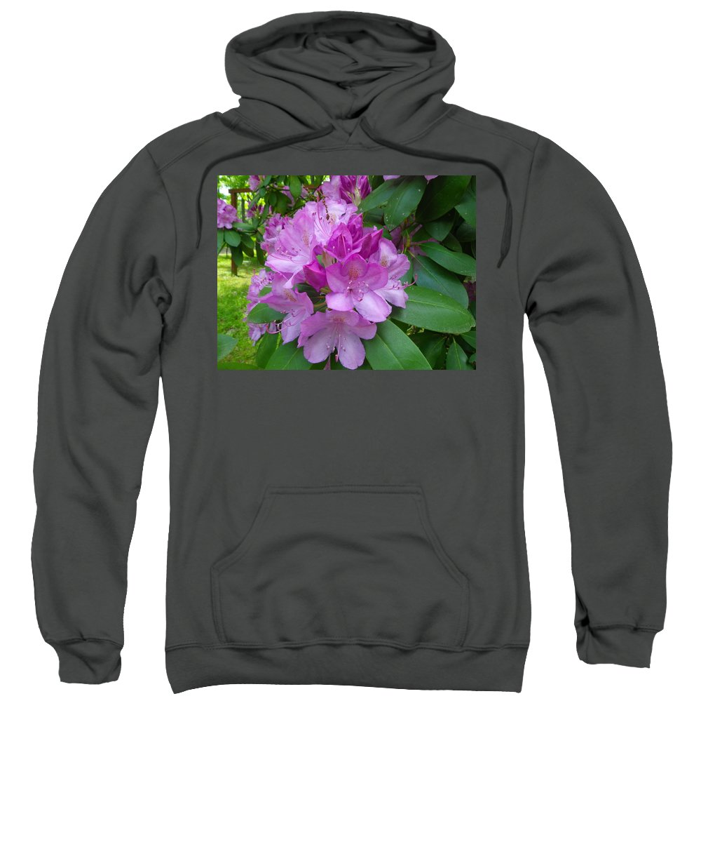 Pink Sweatshirt featuring the photograph Garden Beauty by Anna Ruzsan