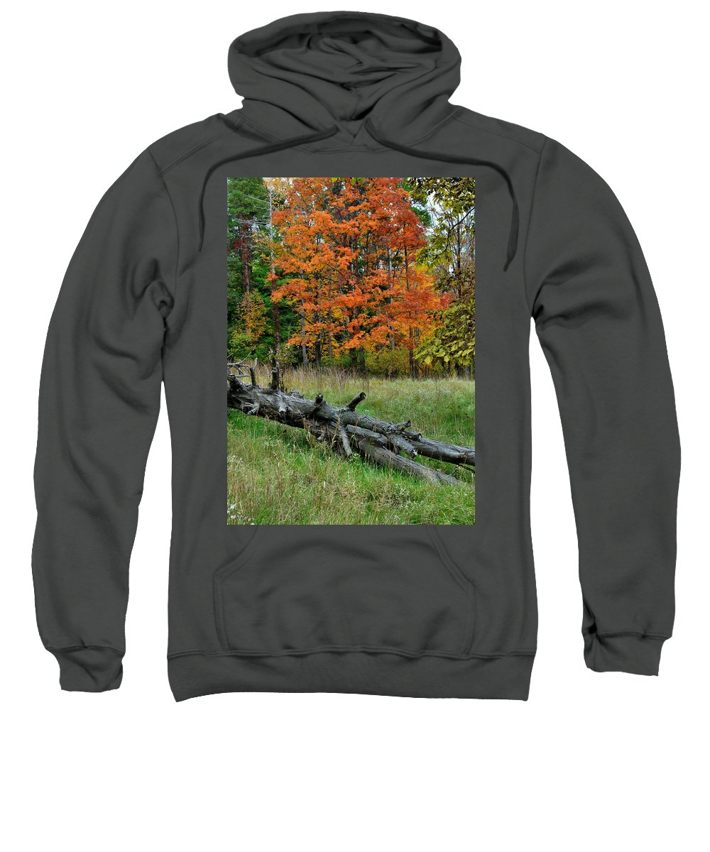 Landscape Sweatshirt featuring the photograph Generations Past And Present by Frozen in Time Fine Art Photography