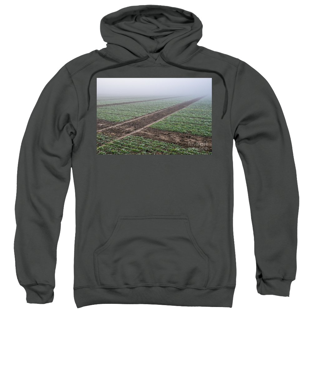 Austria Sweatshirt featuring the photograph Geometry In Agriculture by Hannes Cmarits
