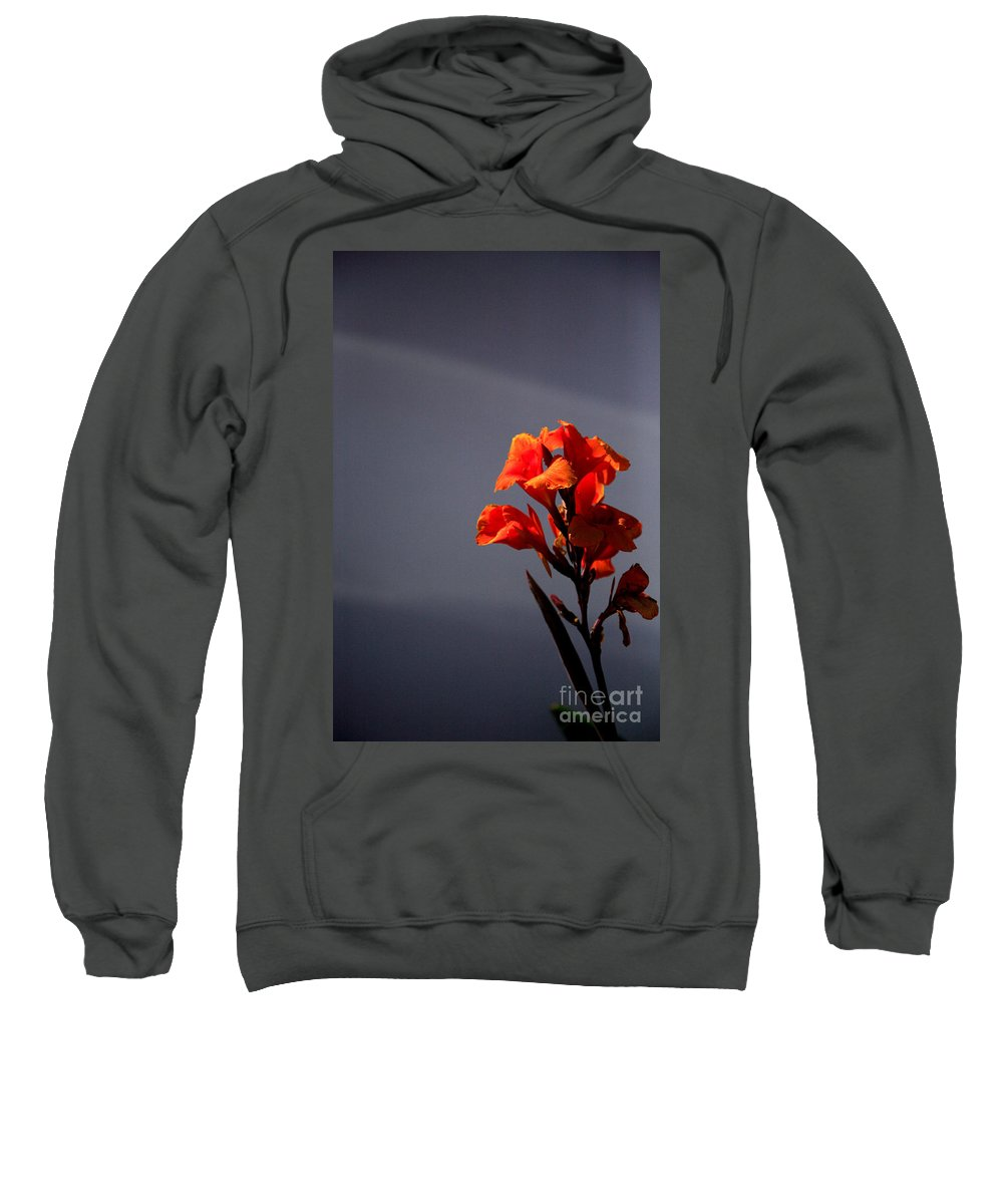 Beautiful Sweatshirt featuring the photograph Gladioli by Deborah Benbrook