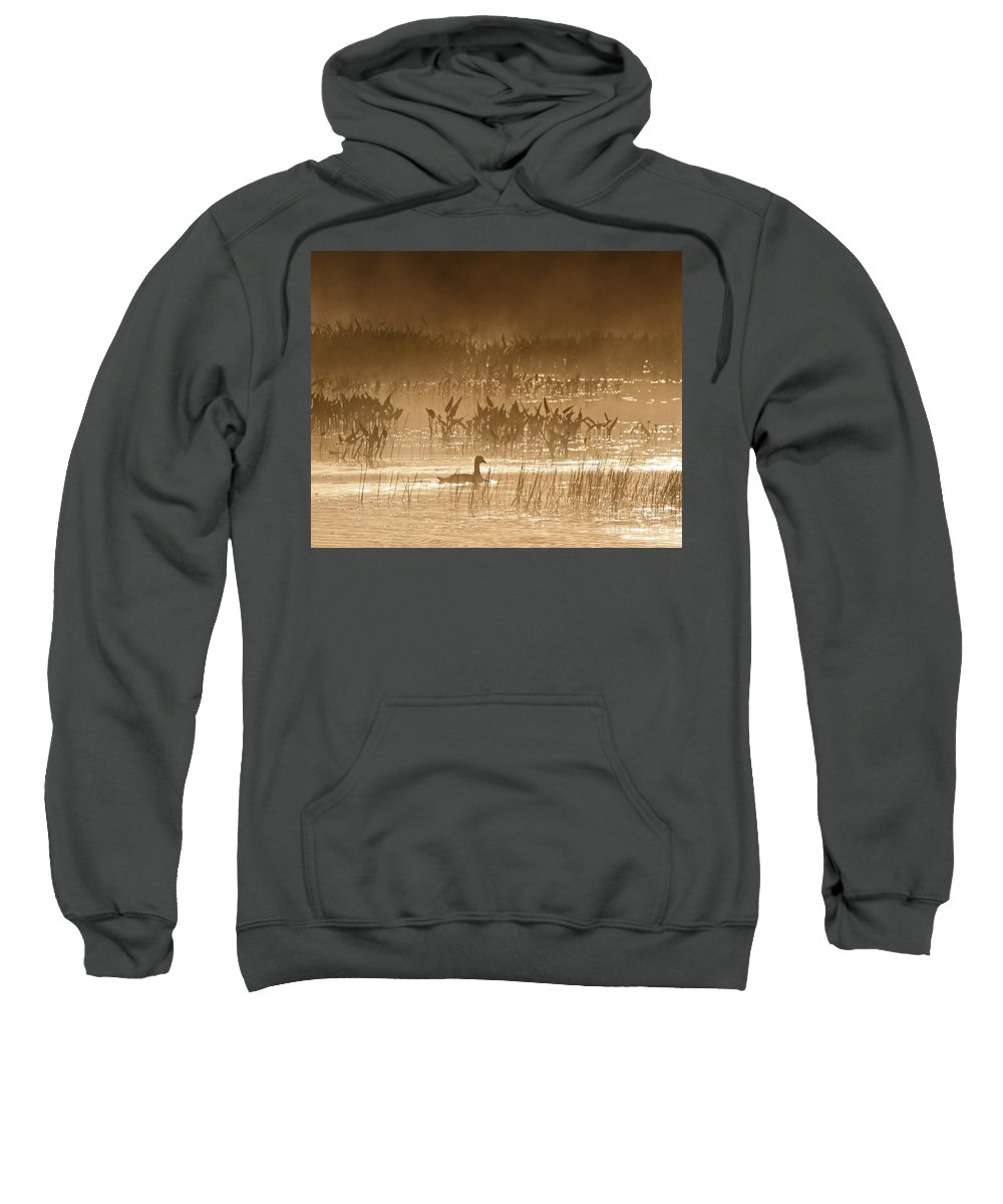 Goose Sweatshirt featuring the photograph Goose Of The Mist by Lloyd Alexander