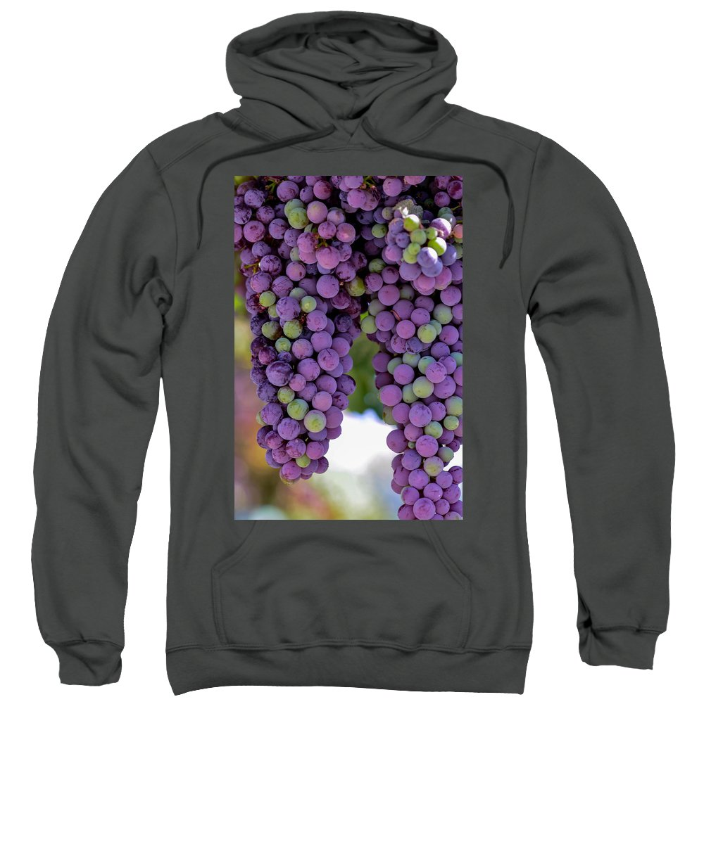 Grape Sweatshirt featuring the photograph Grape Bunches Portrait by Michael Moriarty