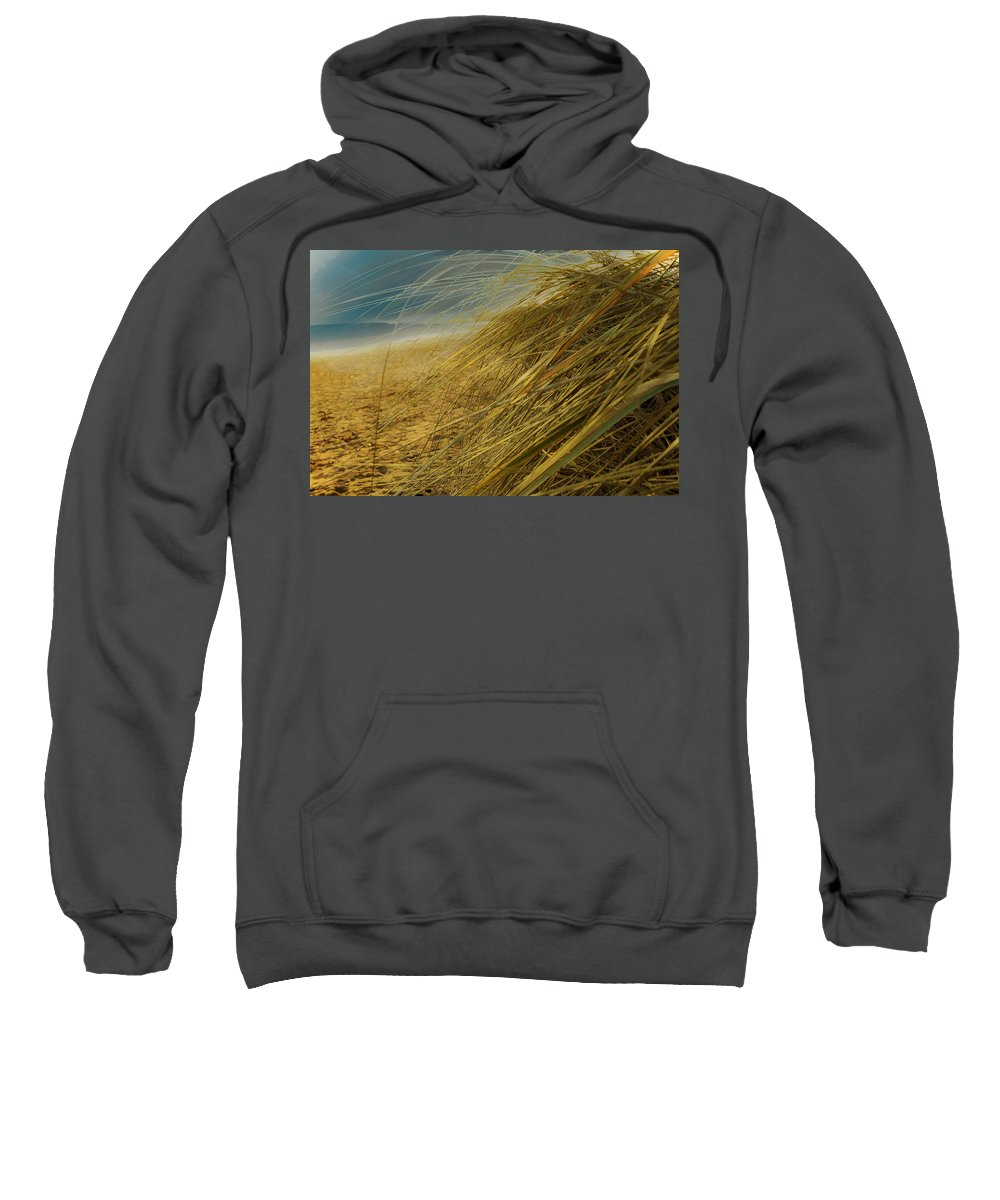 Sea Sweatshirt featuring the photograph Grass To Sea by Hal Halli