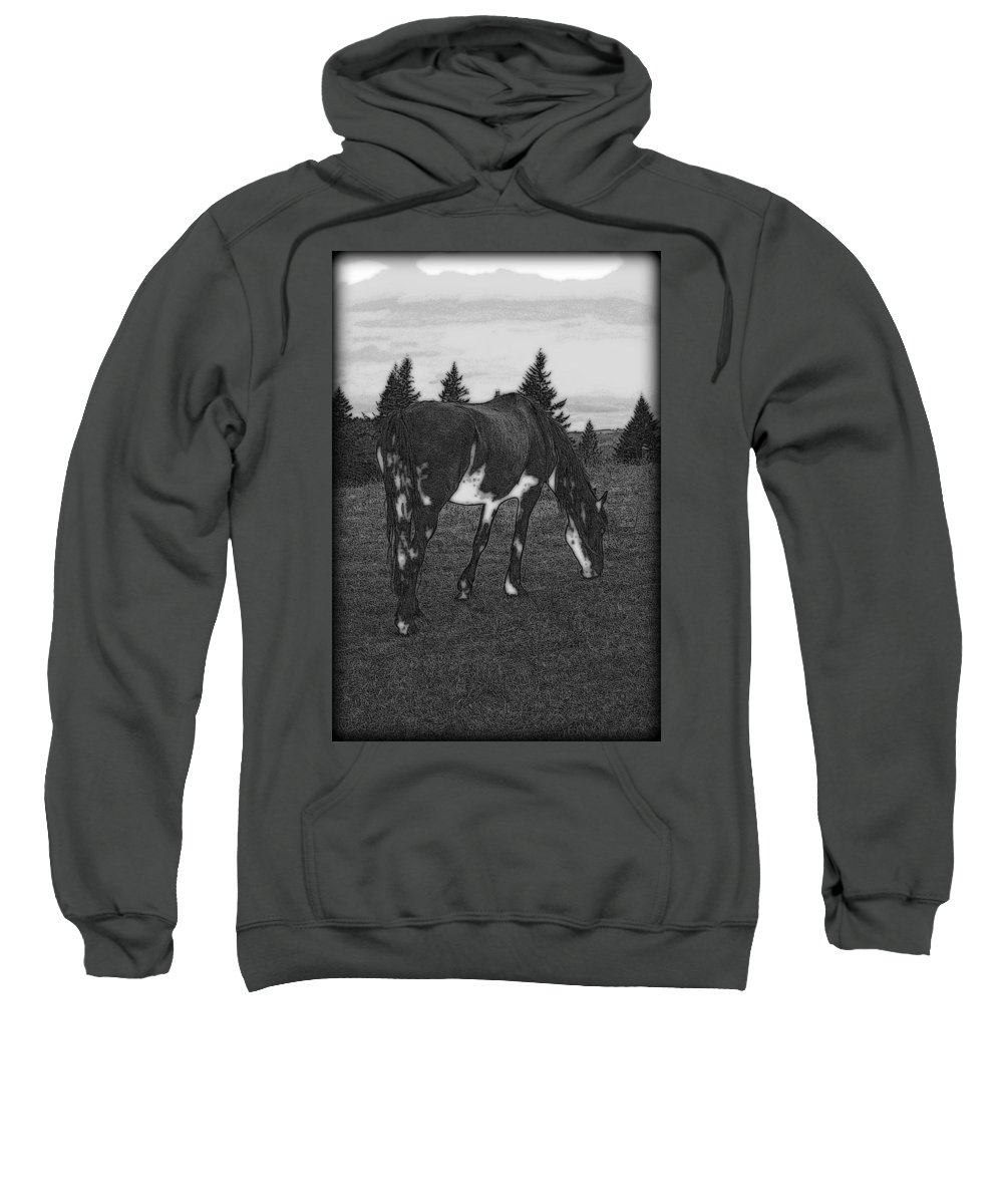 Horse Sweatshirt featuring the photograph Grazing by Kathy Sampson
