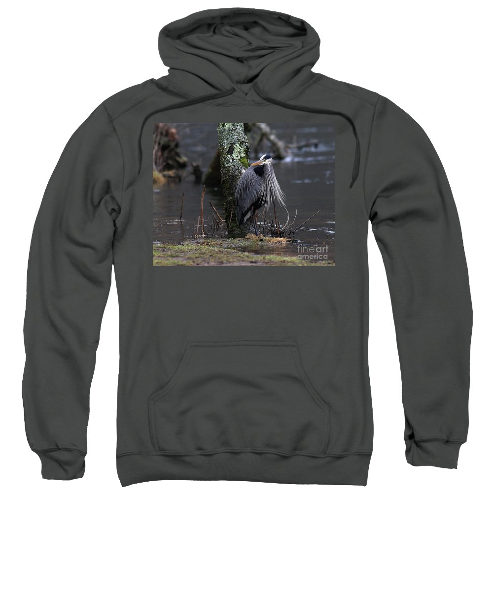 Heron Sweatshirt featuring the photograph Great Blue Heron On The Clinch River by Douglas Stucky