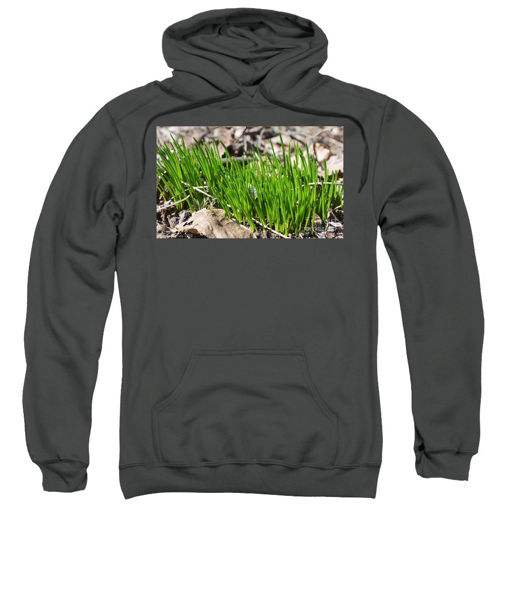 Organic Sweatshirt featuring the photograph Green And Fresh by Felicia Tica