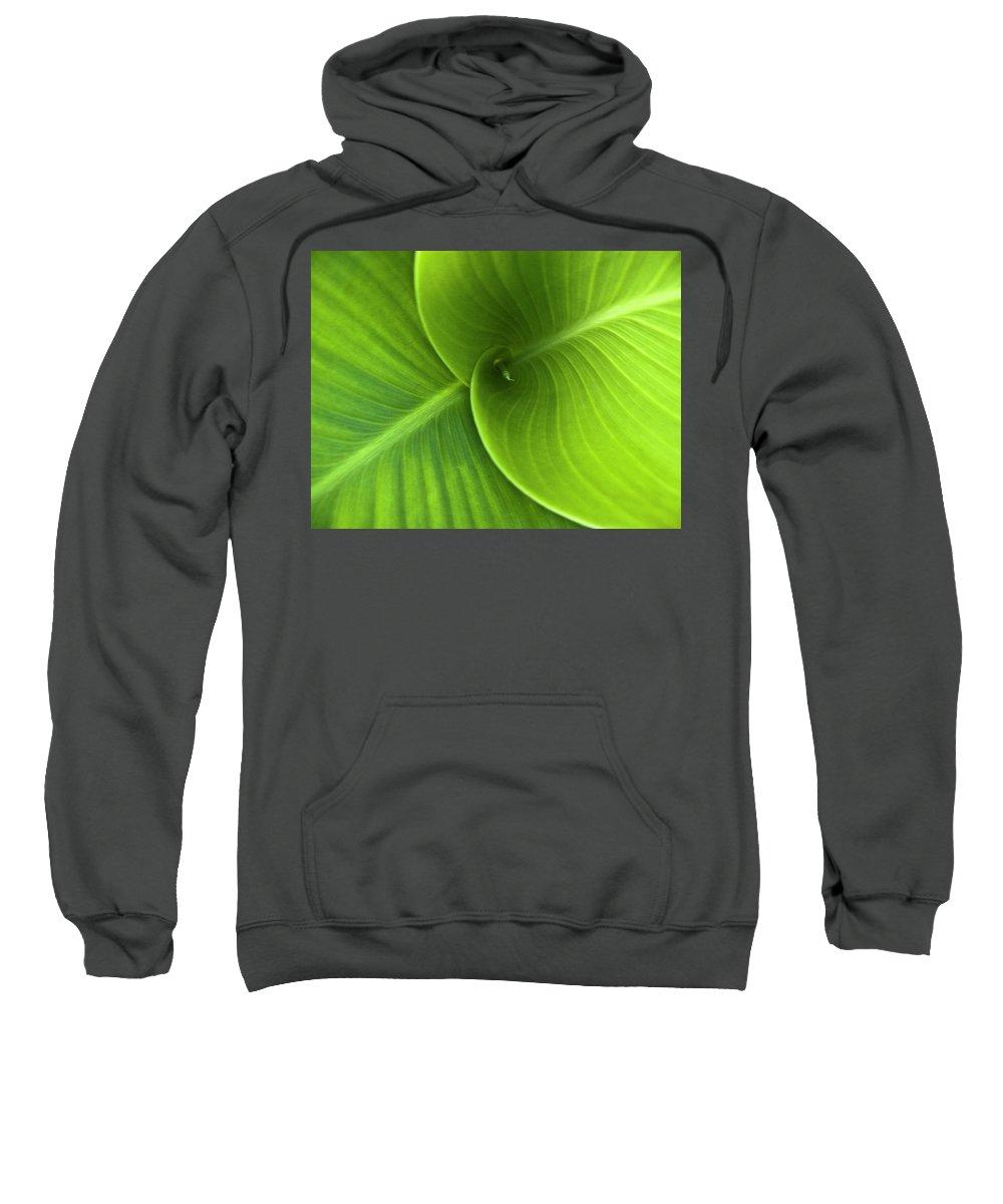 Heiko Sweatshirt featuring the photograph Green Twin Leaves by Heiko Koehrer-Wagner