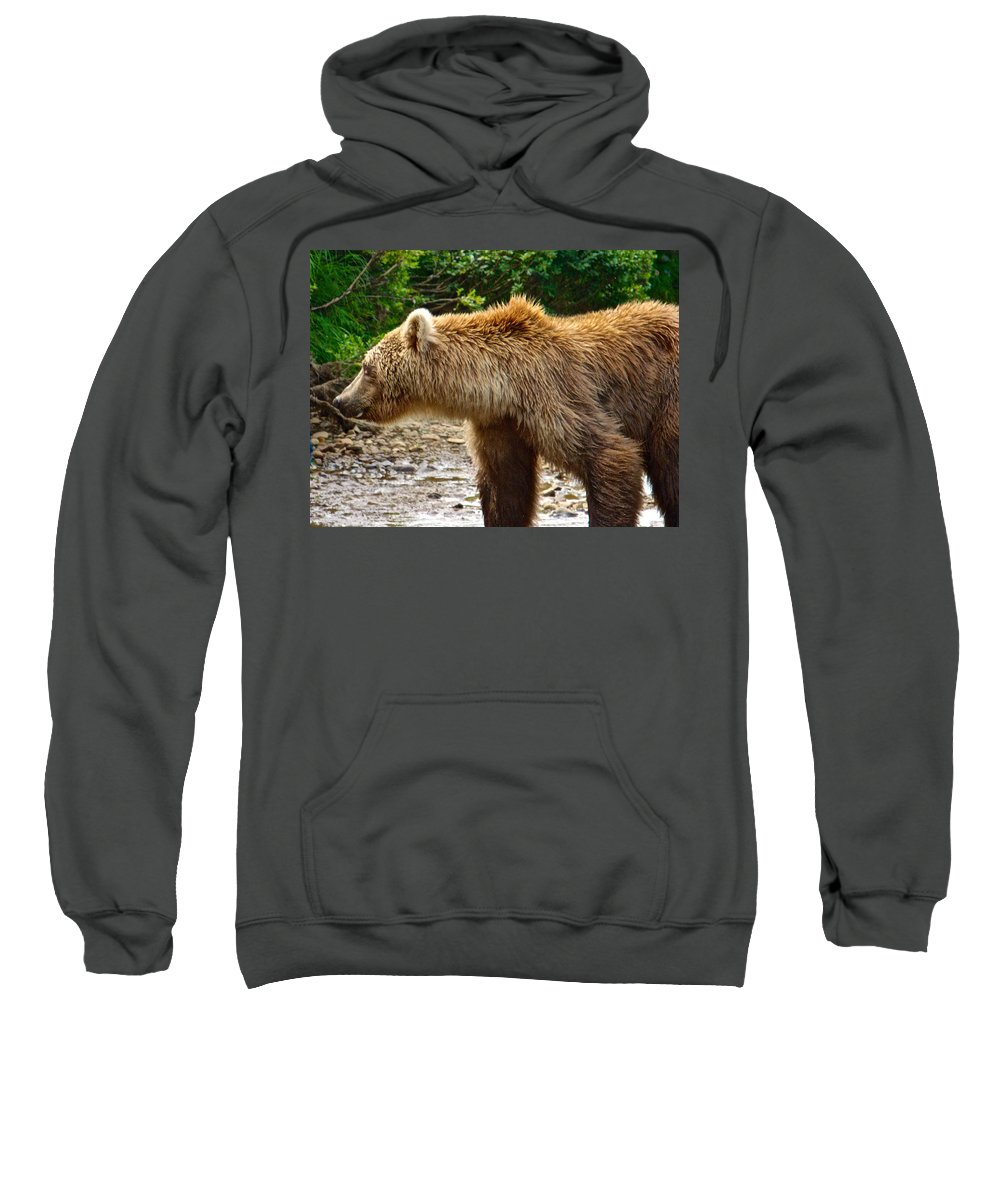 Grizzly Bear Very Close Sweatshirt featuring the photograph Grizzly Bear Very Close In Moraine River In Katmai National Preserve-ak by Ruth Hager
