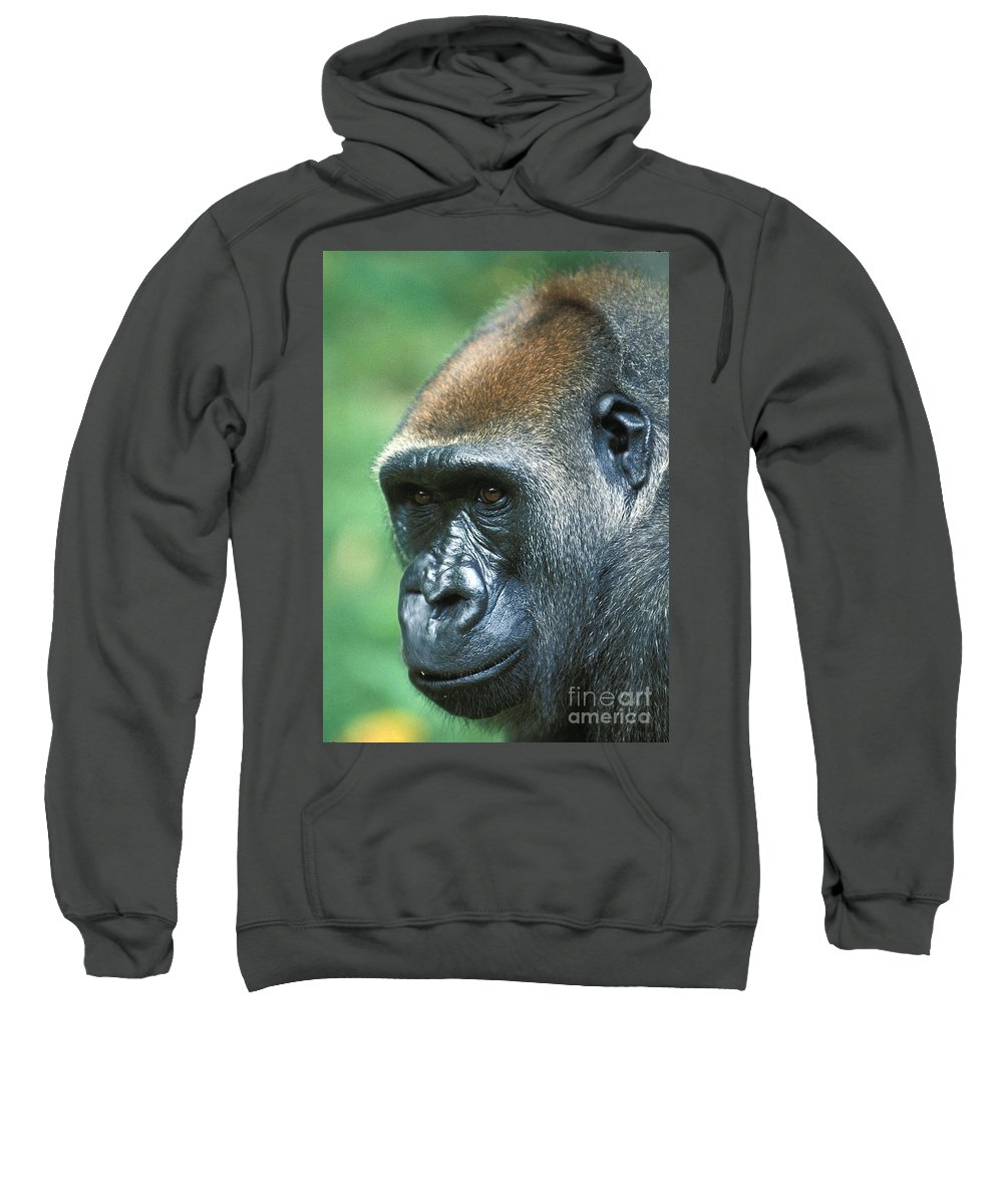 Ape Sweatshirt featuring the photograph Handsome by Bruce Bain