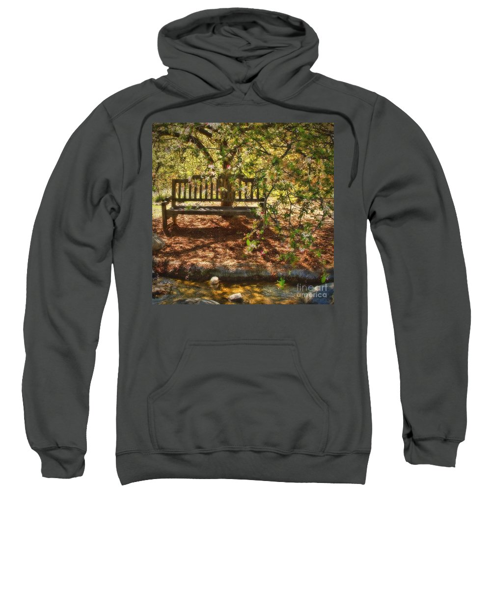 Wood Sweatshirt featuring the photograph Have A Seat by Peggy Hughes