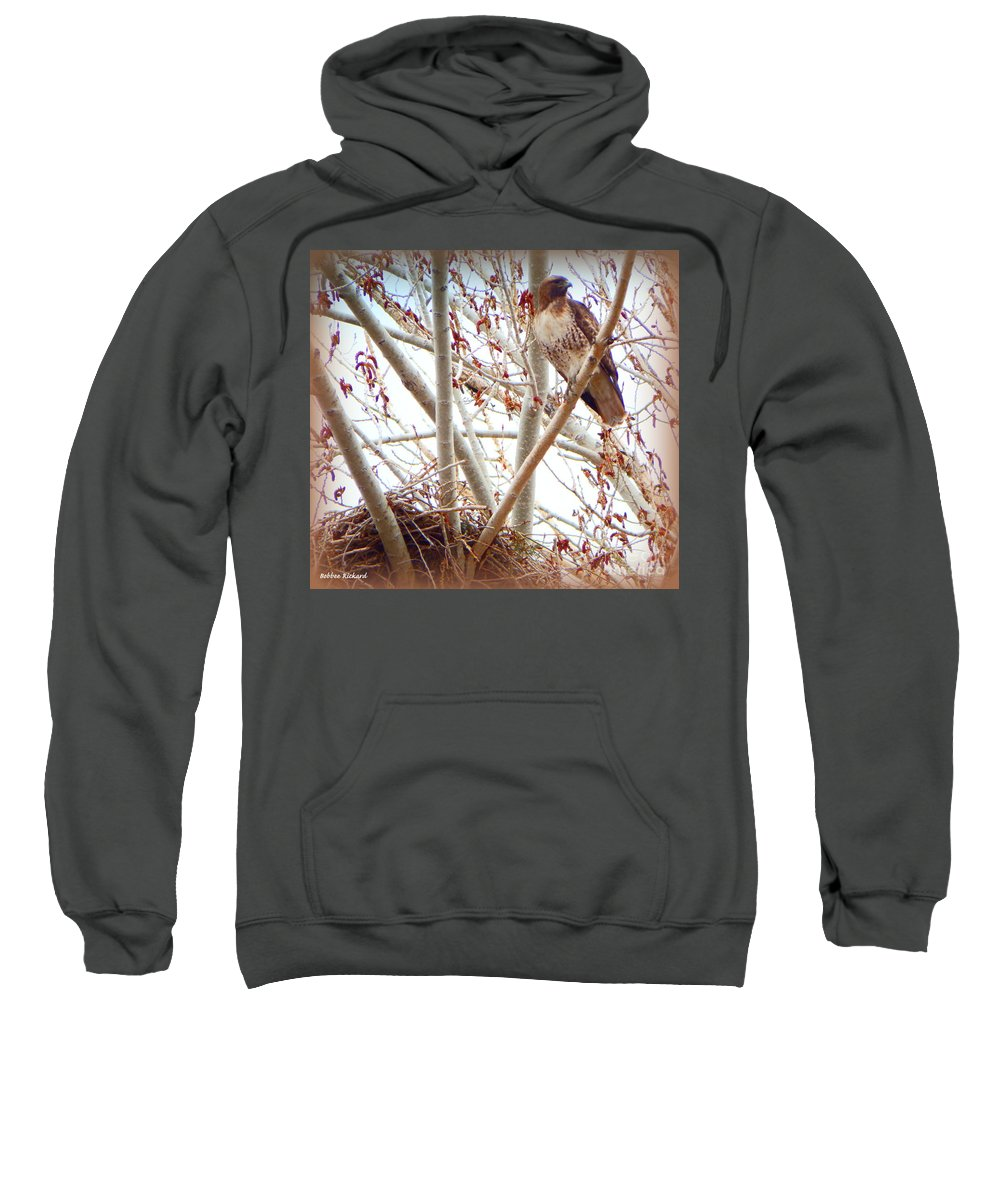 Acrylic Prints Sweatshirt featuring the photograph Hawk Nesting IIi by Bobbee Rickard