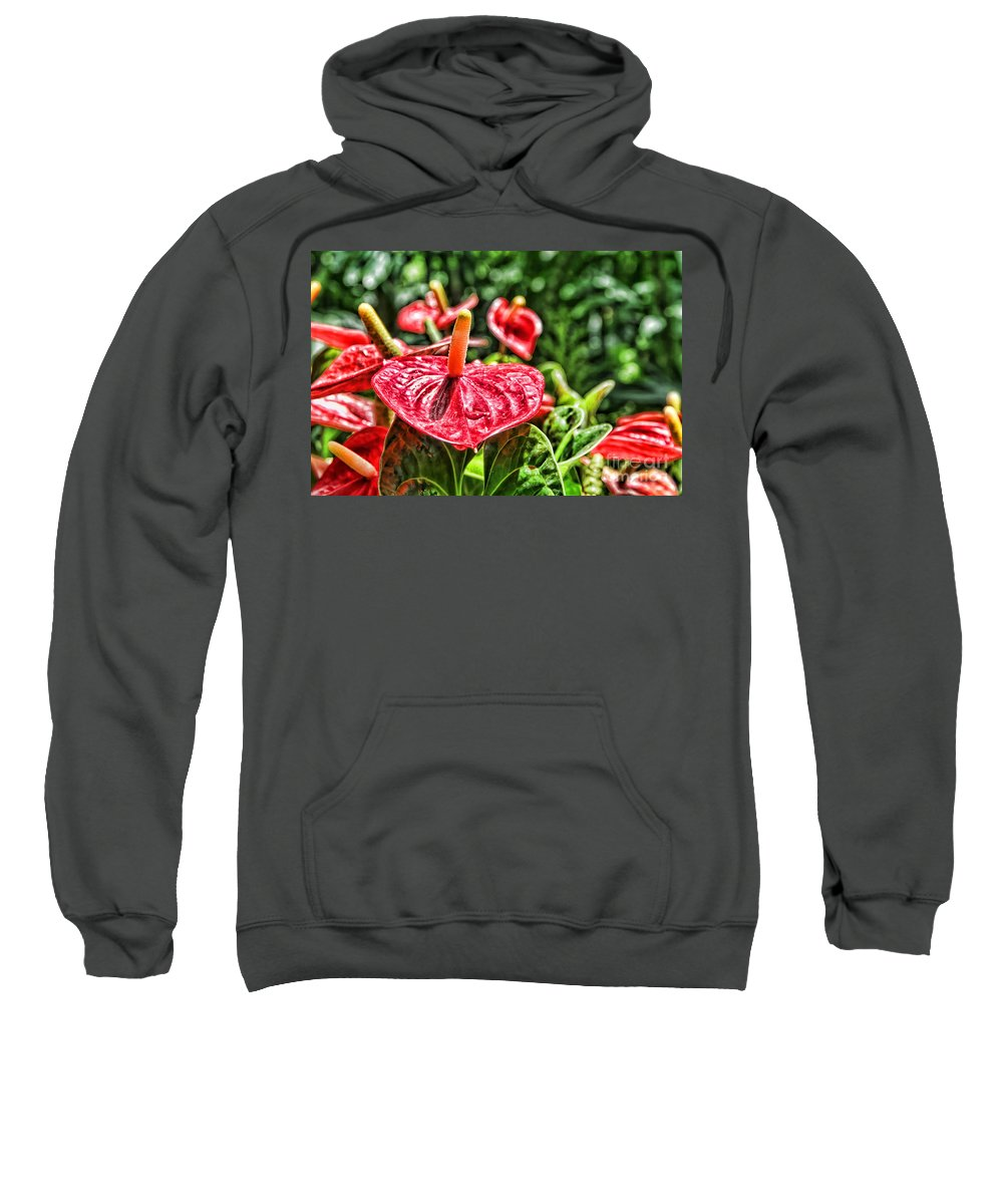 Anthurium Sweatshirt featuring the photograph Heart Of Hawaii By Diana Sainz by Diana Raquel Sainz