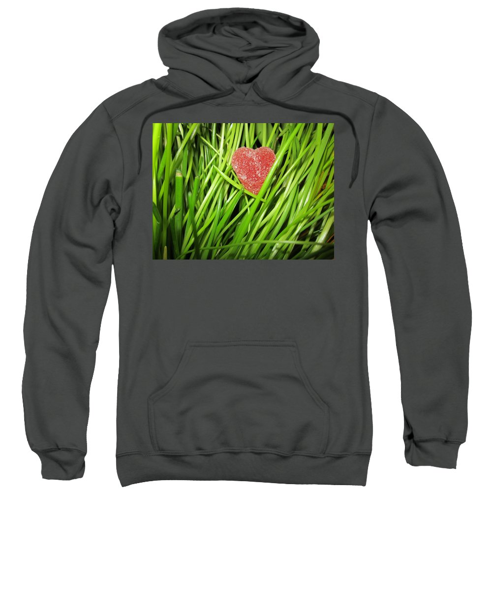 St. Valentine's Day Sweatshirt featuring the photograph Hearty by Rosita Larsson