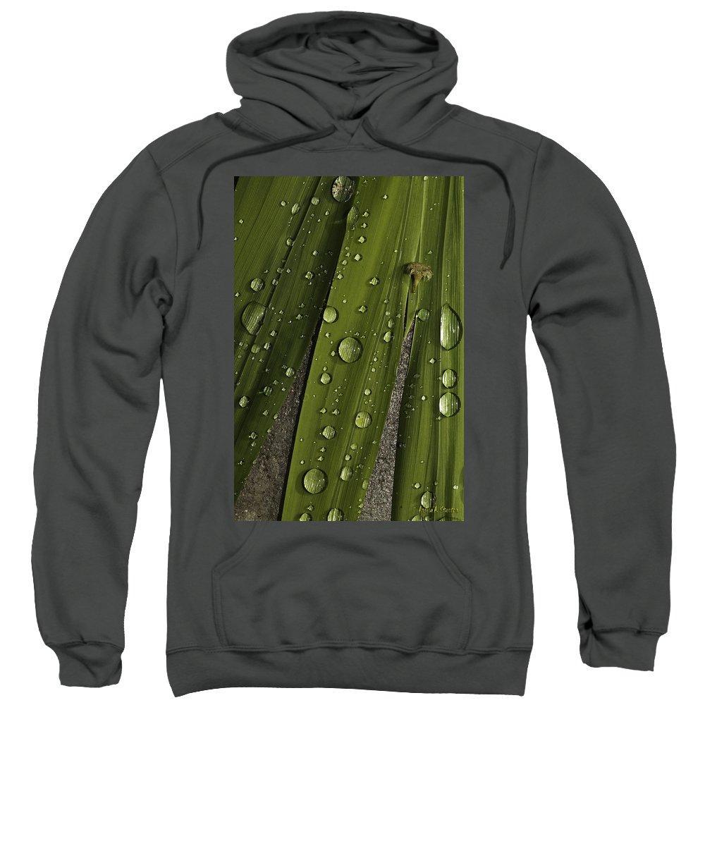 Rain Sweatshirt featuring the photograph Heavy Rain by Angela Stanton