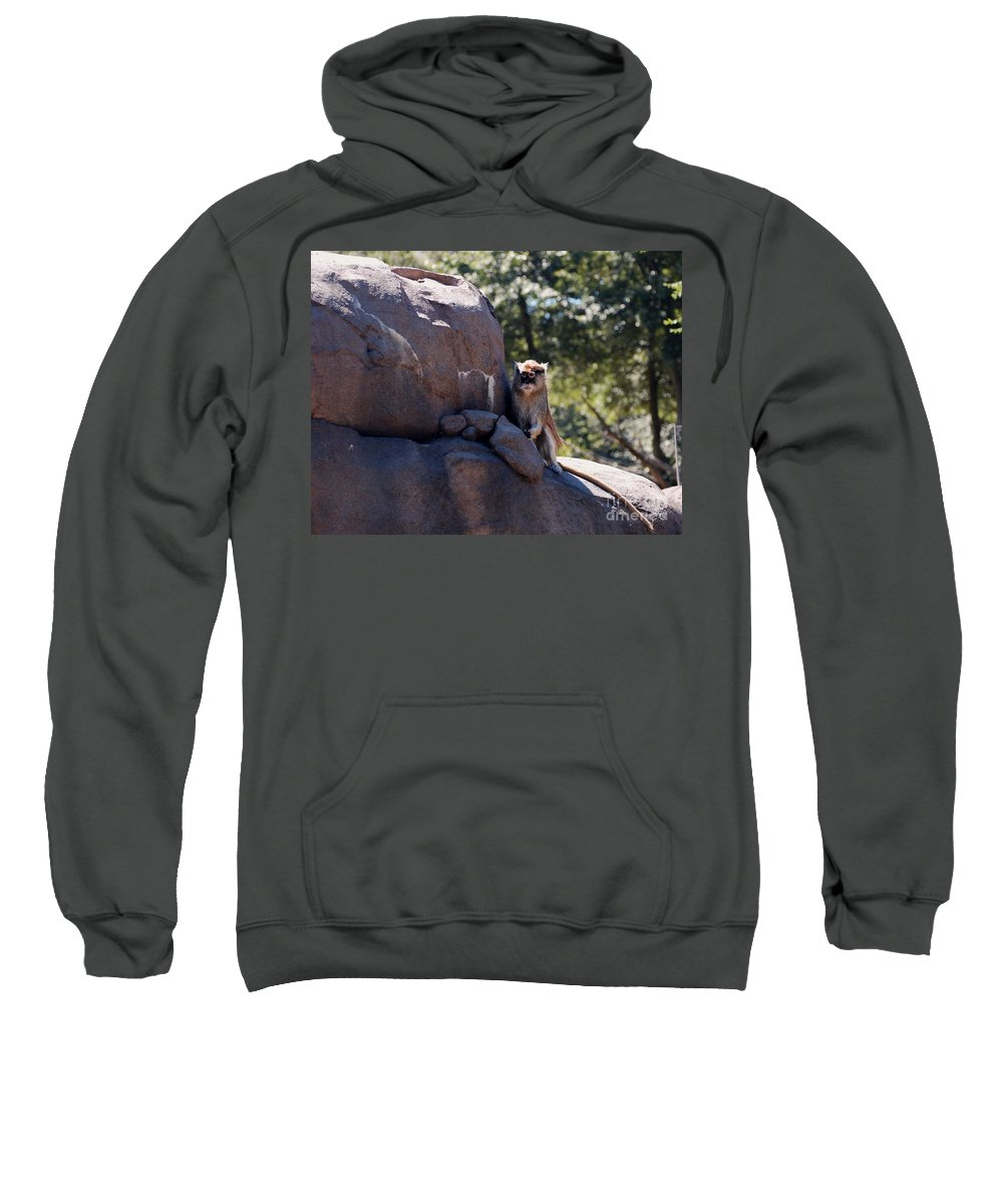 Monkey Sweatshirt featuring the photograph He'll Never See It Coming by Rich Priest