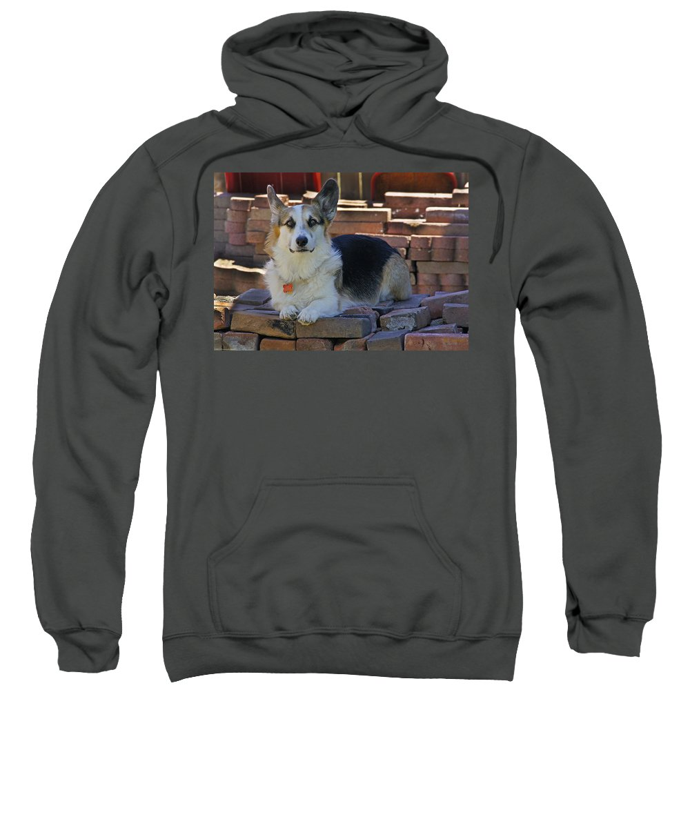 Johnny Sweatshirt featuring the photograph Here's Looking At You by Mick Anderson