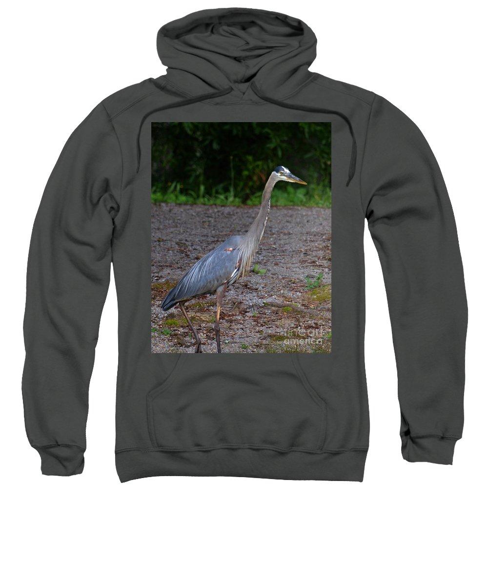 Heron 14-1 Sweatshirt featuring the photograph Heron 14-1 by Maria Urso
