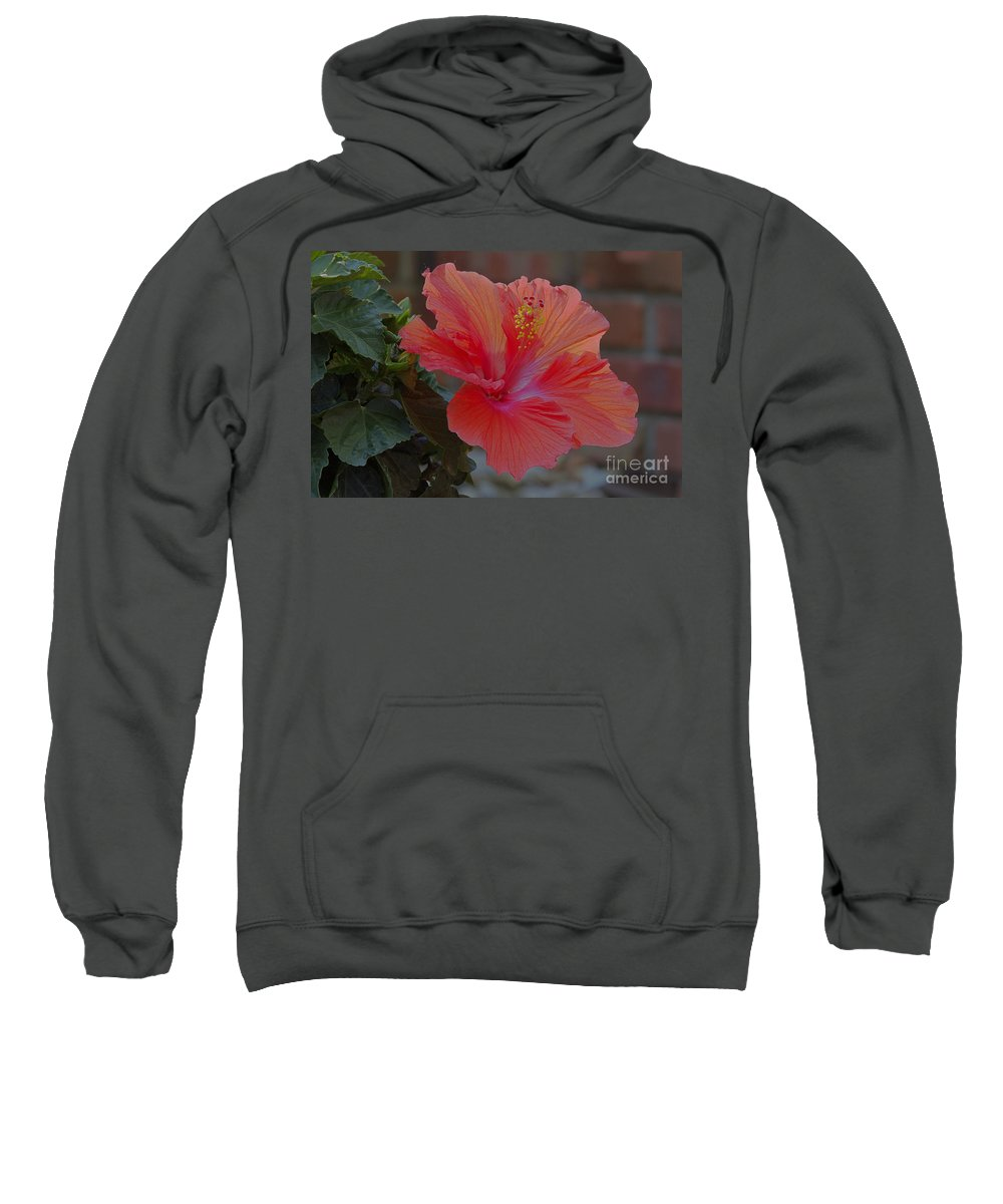 Environment Sweatshirt featuring the photograph Hibiscus 1 by Alan Look