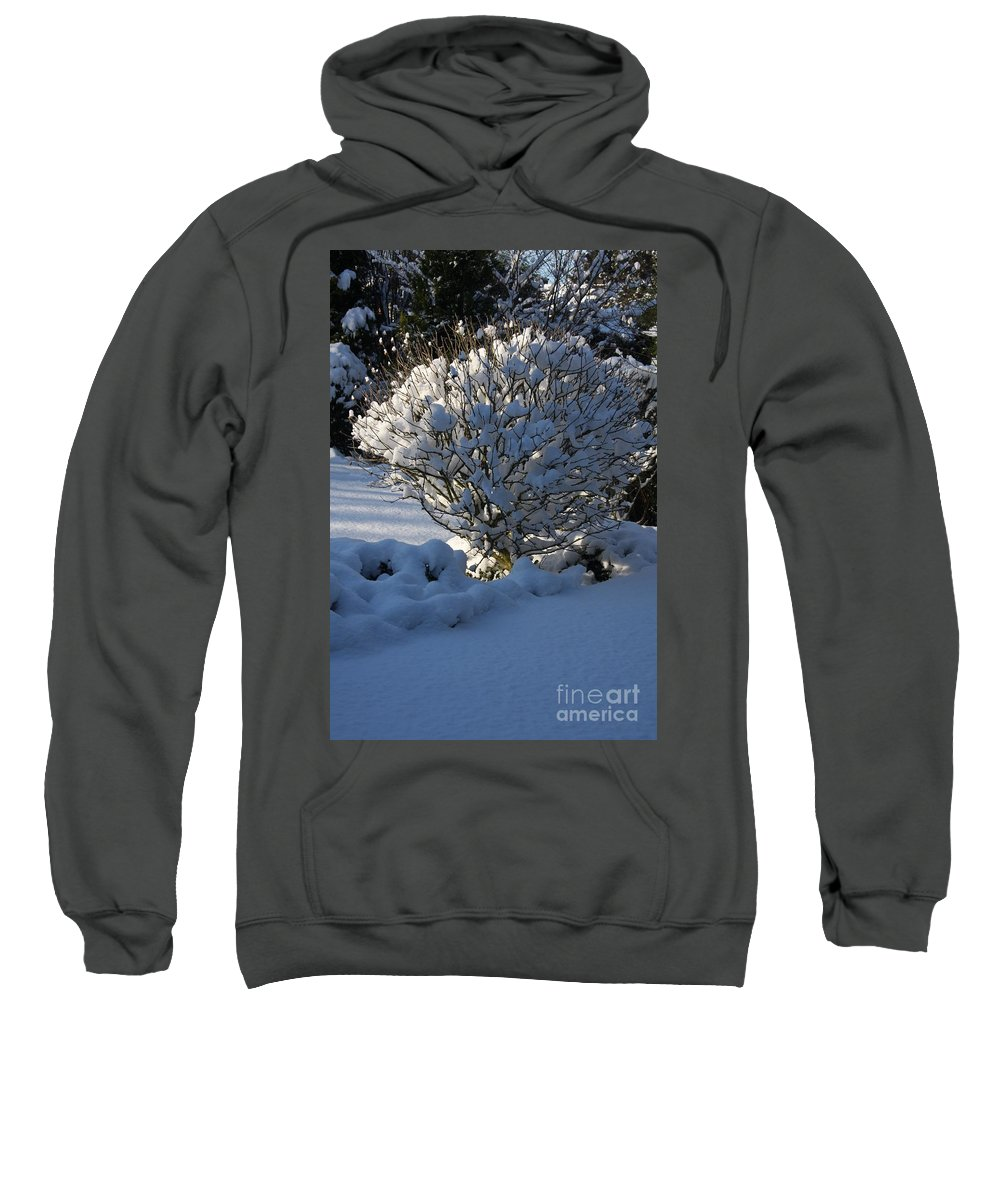 Winter Sweatshirt featuring the photograph Hibiskus In The Wintertime by Christiane Schulze Art And Photography