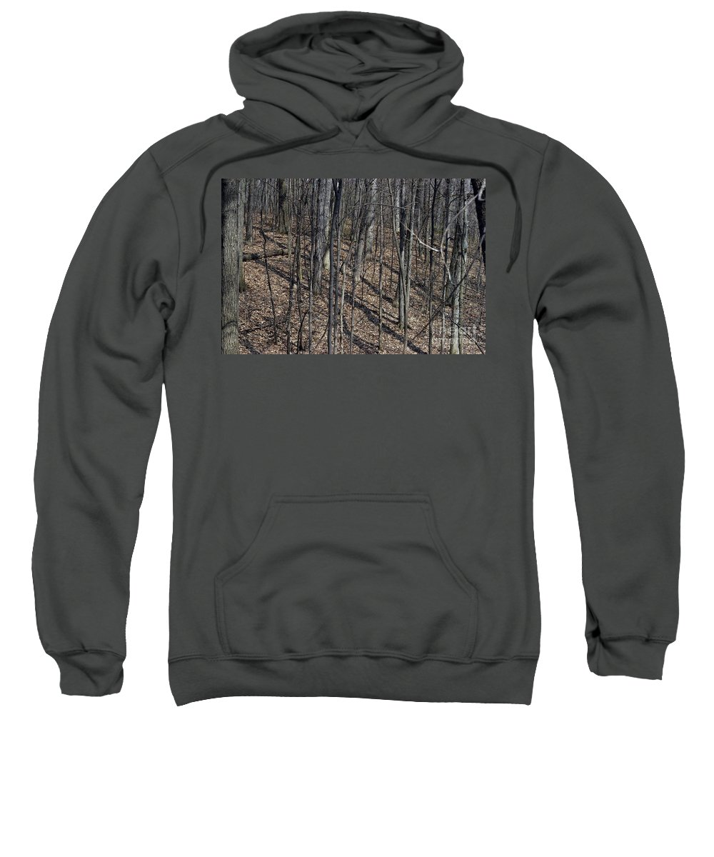Forest Floor Sweatshirt featuring the photograph High Ground by Joseph Yarbrough
