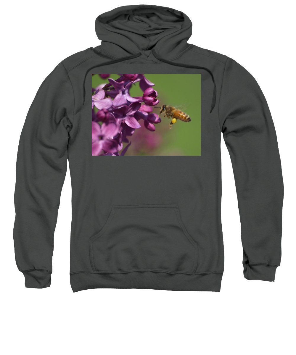 Jim Sweatshirt featuring the photograph Honey Bee And Lilac by James Peterson