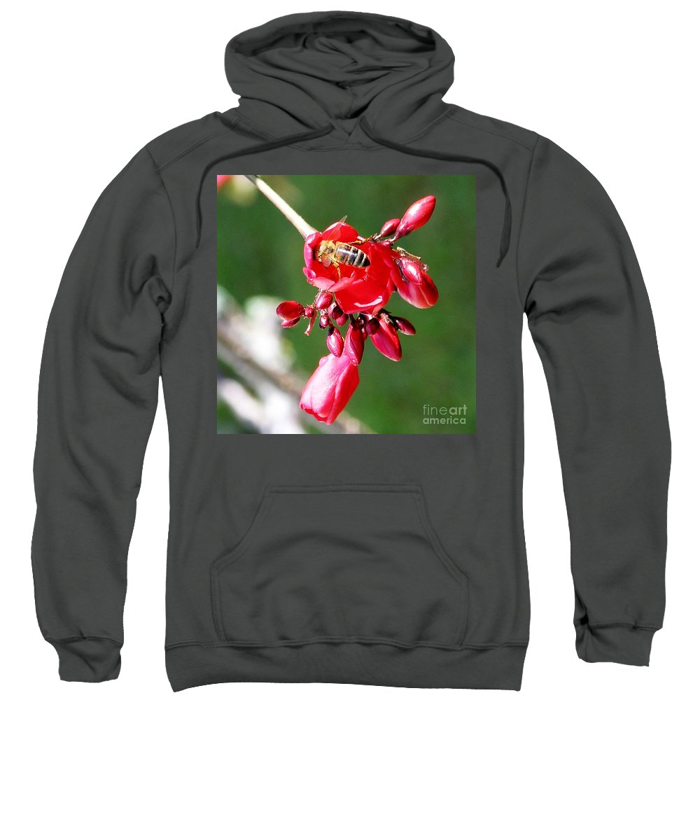 Red Sweatshirt featuring the photograph Honey Bee At Work by Mary Deal