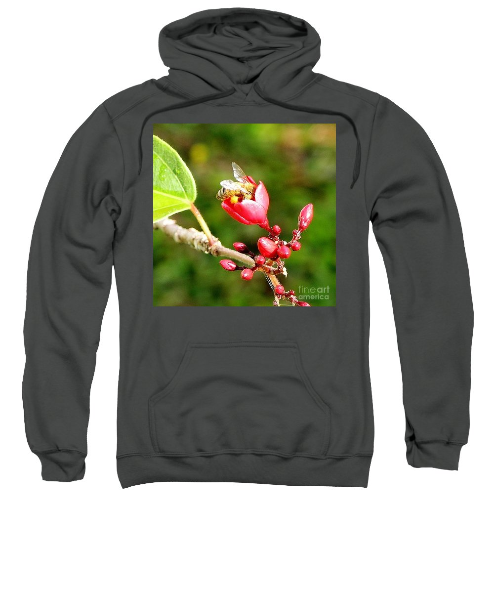 Red Sweatshirt featuring the photograph Honey Bee Loaded With Pollen by Mary Deal