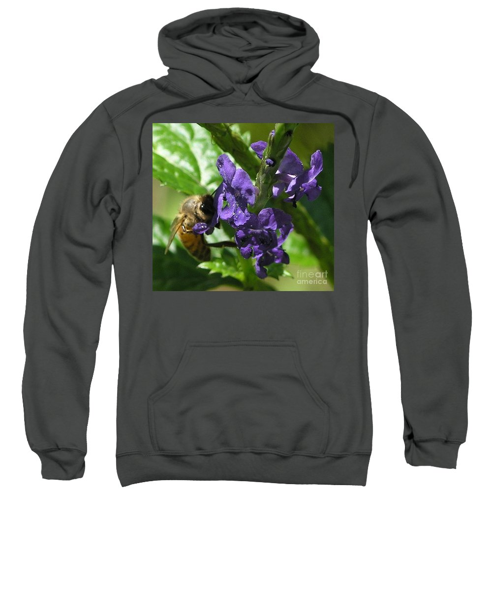 Purple Sweatshirt featuring the photograph Honey Bee On Purple Flower by Mary Deal