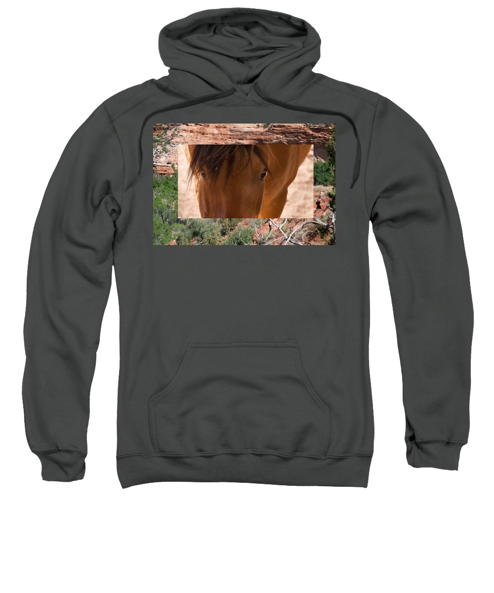 Horse Sweatshirt featuring the photograph Horse And Canyon by Natalie Rotman Cote