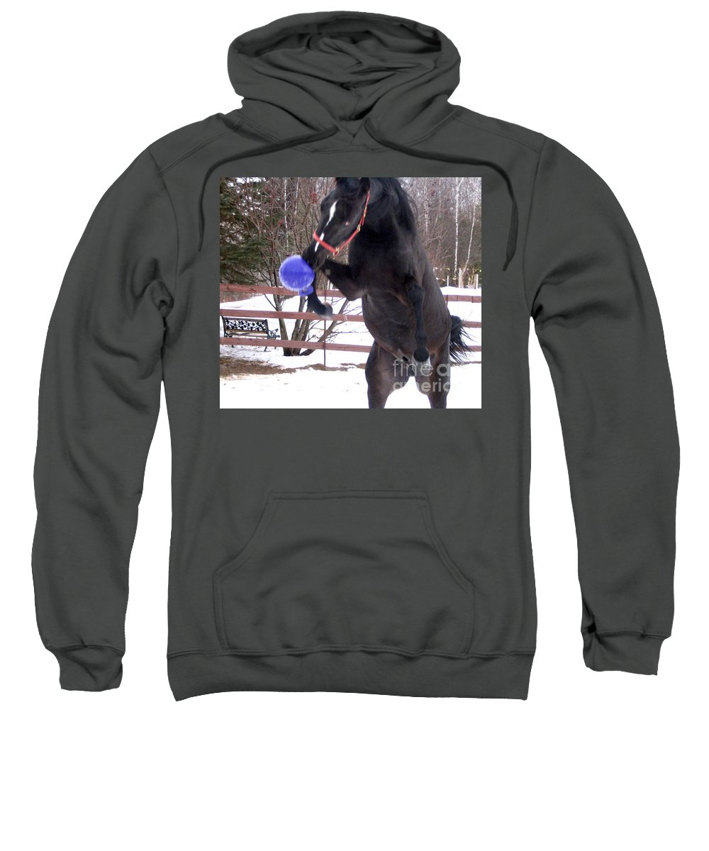 Horse Sweatshirt featuring the photograph Horse Playing Ball by Line Gagne