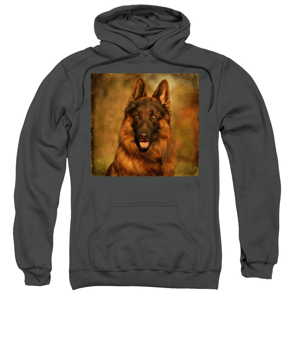 German Shepherd Sweatshirt featuring the photograph Hoss - German Shepherd Dog by Sandy Keeton