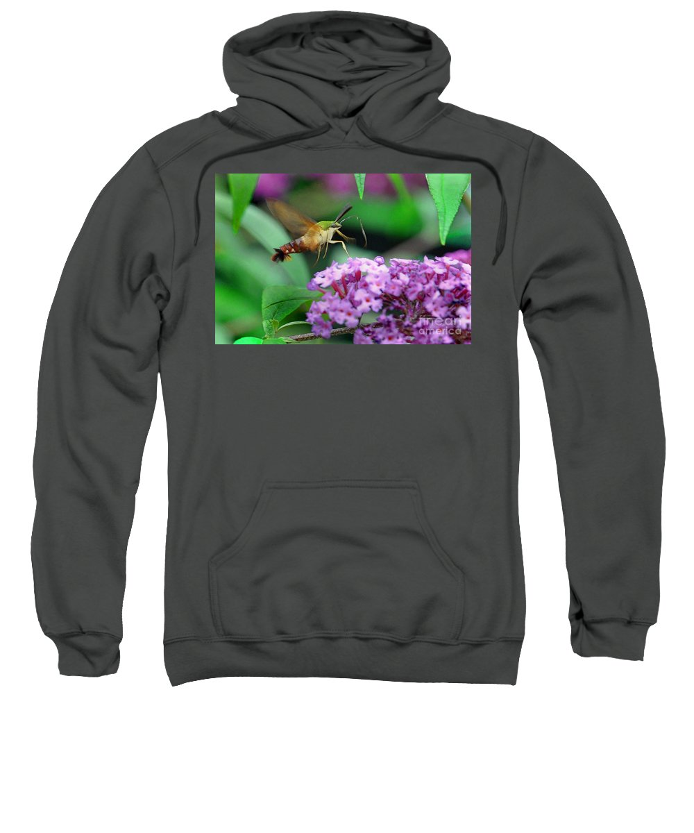 Nature Sweatshirt featuring the photograph Hummingbird Clearwing Moth by Gary Keesler