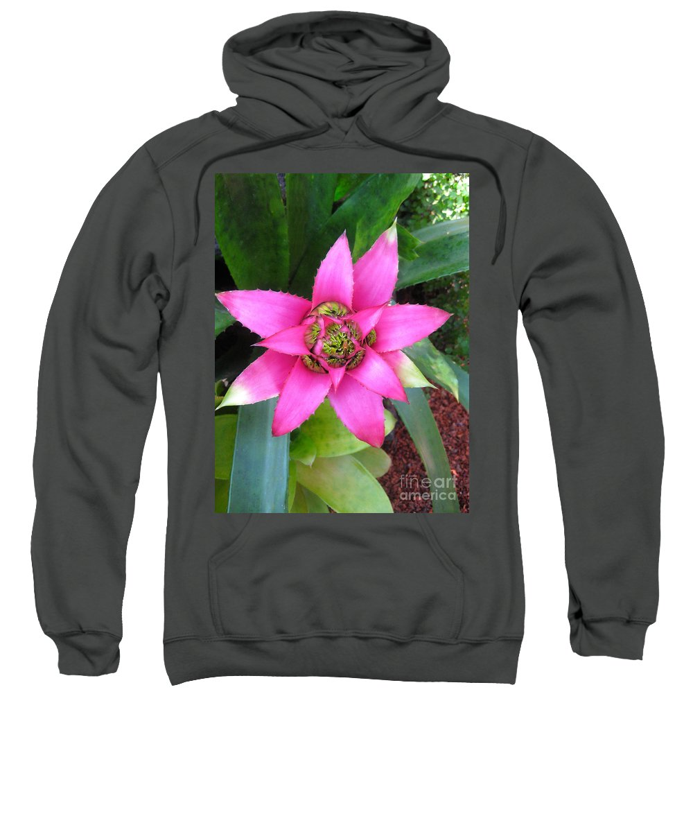 Pink And Beautiful Sweatshirt featuring the photograph Pink And Beautiful by Claudia Ellis