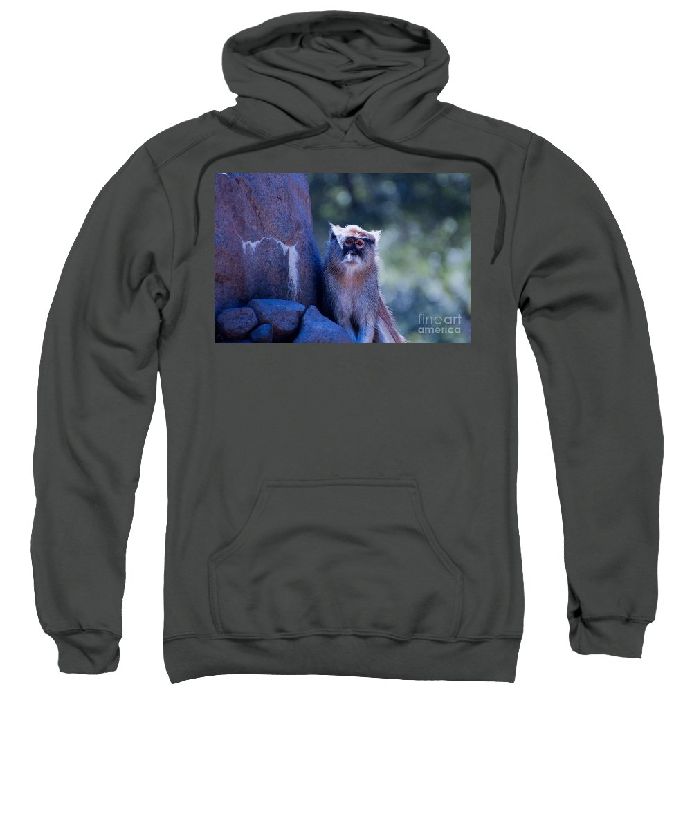 Monkey Sweatshirt featuring the photograph I Really Miss Her by Rich Priest