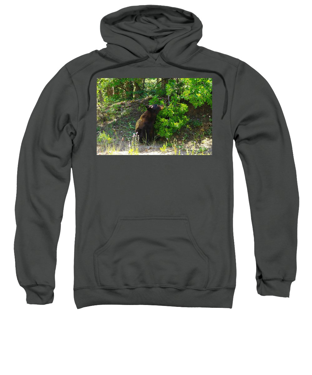 Animals Sweatshirt featuring the photograph I Smell Something Good In There by Jeff Swan