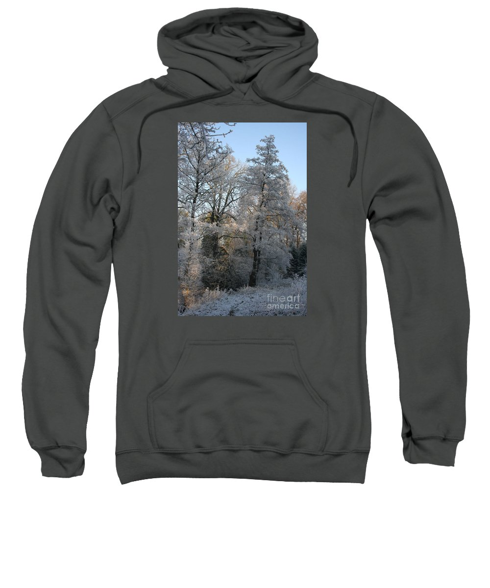 Ice Sweatshirt featuring the photograph Iced Trees by Christiane Schulze Art And Photography