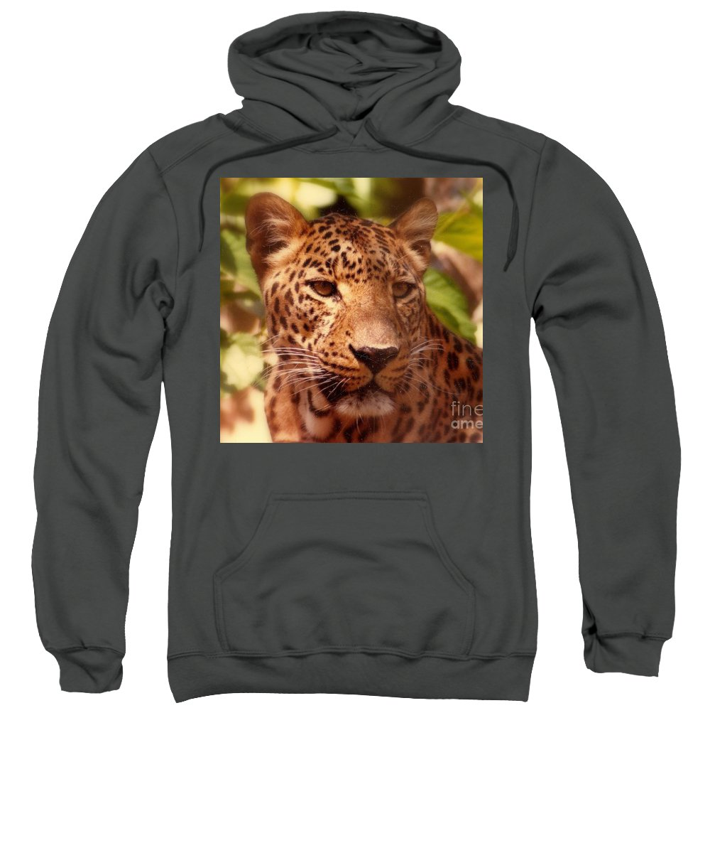 Nola Sweatshirt featuring the photograph New Orleans In The Eyes Of The Leopard by Michael Hoard