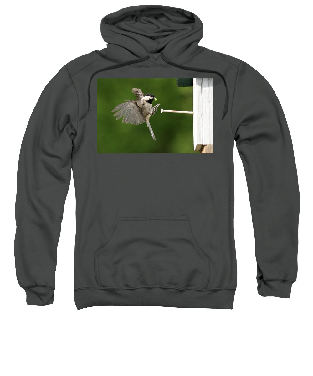 Black-capped Sweatshirt featuring the photograph Incoming II by Douglas Stucky