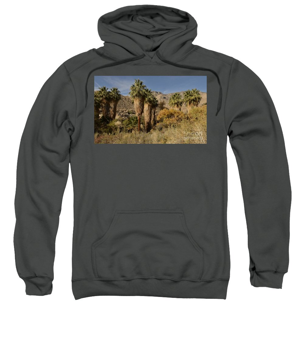 Indian Canyons Sweatshirt featuring the photograph Indian Canyons by Yinguo Huang