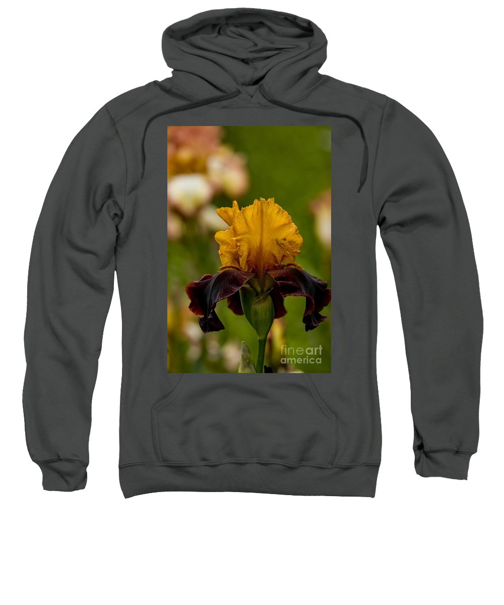 Iris Sweatshirt featuring the photograph Iris Pictures 149 by World Wildlife Photography